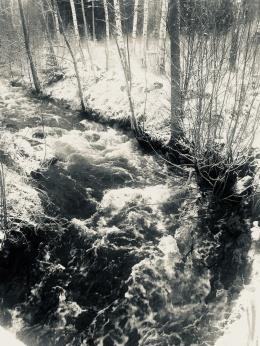 Foto Linda Johansson
