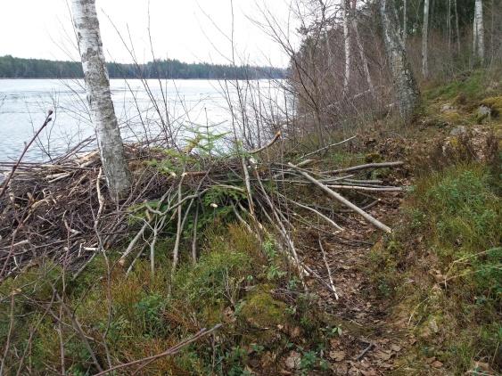 Utbyggnaden av Hyddan hamnade på stigen.