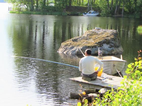 Fiskaren och måsen