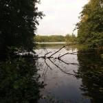 Kyrksjön
