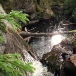 Vattenfallets nedre del