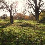 Gravfält från järnåldern_144743