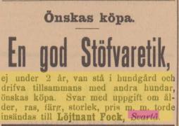 18950806
