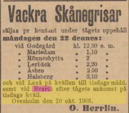 19061017