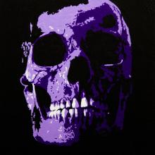 Skull 2016 SOLD