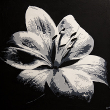 Lily 2016 SOLD