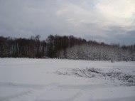 Vinter 09/10 - Vi börjar hugga