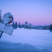 Vinterskymning_Stephan Nord 1_3