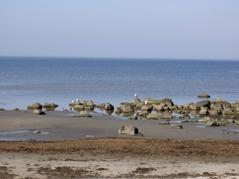 Sista dagen följer turen den nya Kattegattleden utmed kusten förbi stränder och fiskelägen.