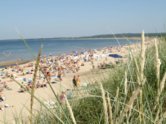 A lot of sandy beaches with great opportunities to take a refreshing swim in the salty ocean.