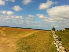 The wonderful Hallands coast with its traditional stone walls. Photo: Helen Andersson.