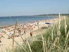 Du cyklar utmed kilometerlånga sandstränder med många tillfällen till salta bad.