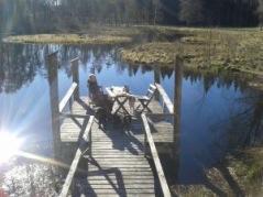 Avkopplande vyer väntar dig på Hallands landsbygd.
