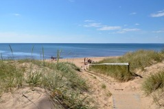 The tour starts and ends in Halmstad. Why not book an extra night in Halmstad and enjoy one of the many wellknown beaches as Tylösand and Östra Stranden.