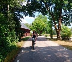 Turen tar dig ut på landet! Här möter du lugnet med storskog, sjöar och ängar. Foto: HG Karlsson.