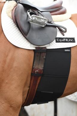 BellyBand™ - HorseSize