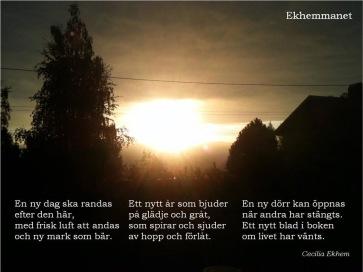 Fler dikter av Cecilia hittar du på @ekhemmanet på Facebook