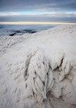 Kallt och kargt på berget