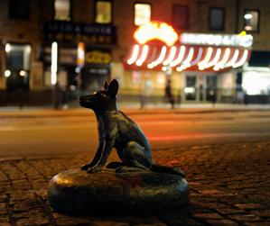 Hunden på Stigbergstorget