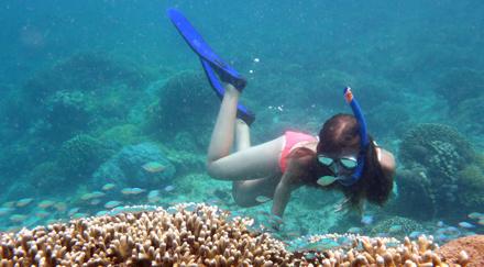 Vilma spanar in korallerna