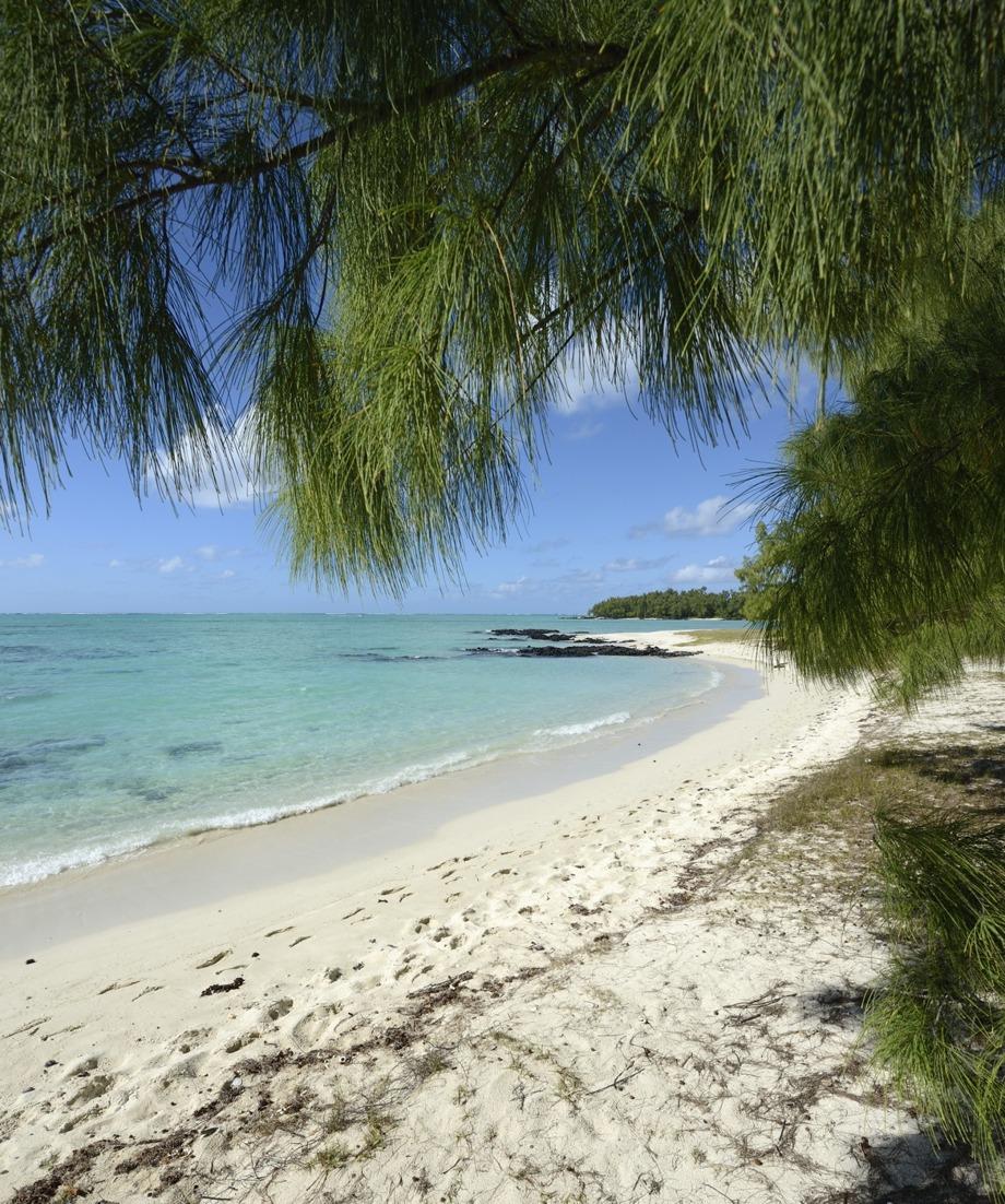 en strand...