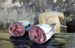 tonfisk tror jag...