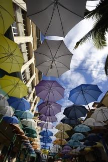 paraplyer överallt, varför...