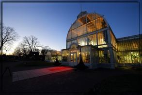 Palmhuset trädgårdsföreningen...