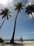 nosen poserar under palmerna...