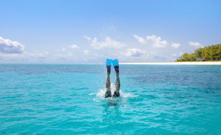nosens bild på delfinkungen blev utsedd till månadens bild på TrippAdviser i augusti...