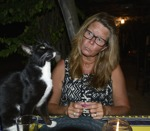 nosen älskar katter...
