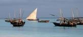 fiskebåtarna lägger ut vid halv sju på morgonen...