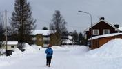 morgonjogging i Svartbjörnsbyn...