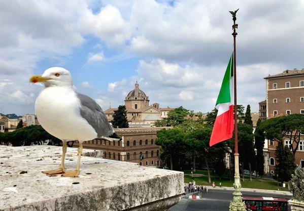 Carinas bild av Rom...