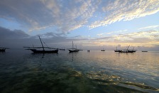 fiskeflottan i Nungwi...