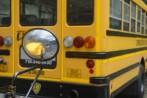 skolbussar med ungar som skall gå på museum borde förbjudas enligt lag...