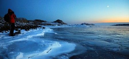 En tidig januarimorgon Särö Västerskog