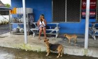 Carina delar maten med hundarna...