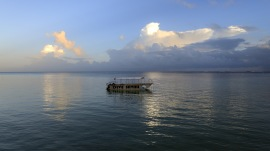 på fredag äker vi med denna båten och snorklar med skölpaddorna...