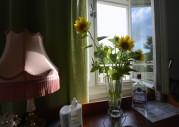 fina solrosor från Visingsö...