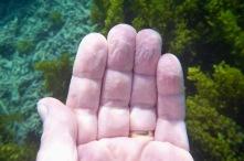 min morsa sa alltid till mig att sluta bada när fingrarna blir skrynkliga...