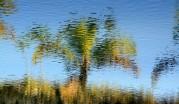 en reflektion i vattnet...