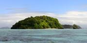 Bat Island, här finns bara fladdermöss....