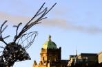 julrenen blickar ut över Glasgows gator...