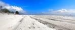 manchester sand...