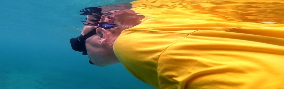 som en delfin i vattnet...