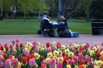 picknick utanför Palmhuset...