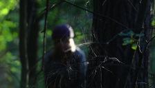 spindelnät får man räkna med i skogen...