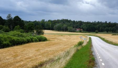 vackra svenska sommarvägar...