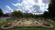 kaktusplanteringen Carl Johans park...